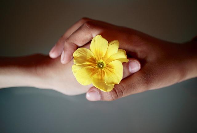 信頼関係の作り方。お客様との信頼関係はデメリットを伝えることから始まる?!