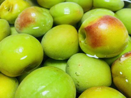 美容と健康の食〜日本の食材〜暑い夏にぴったり!疲労回復と栄養吸収促進の『梅(うめ)』